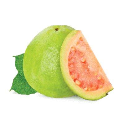 画像1: Guava グァバ FUMARI 100g