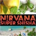 Lemon Beach Party レモンビーチパーティ Nirvana 100g