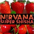 Redrum レッドラム Nirvana 100g