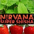 Salty Slug ソルティスラッグ Nirvana 100g