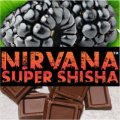Concentric Eccentricity コンセントリックエキセントリセティ Nirvana 100g