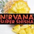 Primal Pineapple プライマルパイナップル Nirvana 100g